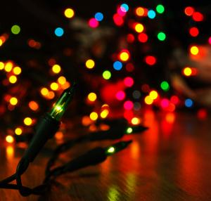 Lights All Night 2013