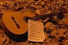 voice and  classical guitar