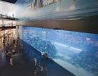 Public aquarium brings infinite pleasure to our life