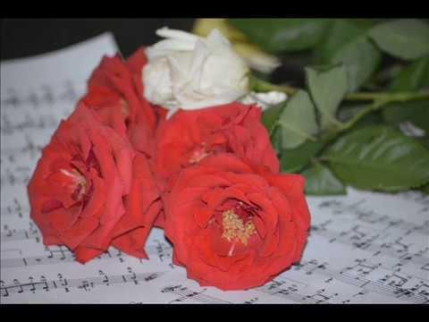 S\u0103 nu uit\u0103m nicic\u00eend  s\u0103 iubim trandafirii